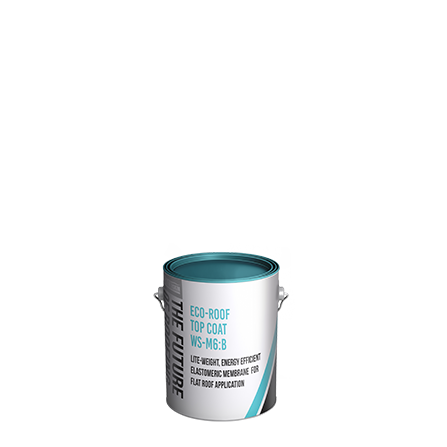 WSM 6 1 Gallon Pail Flat Roof Coating